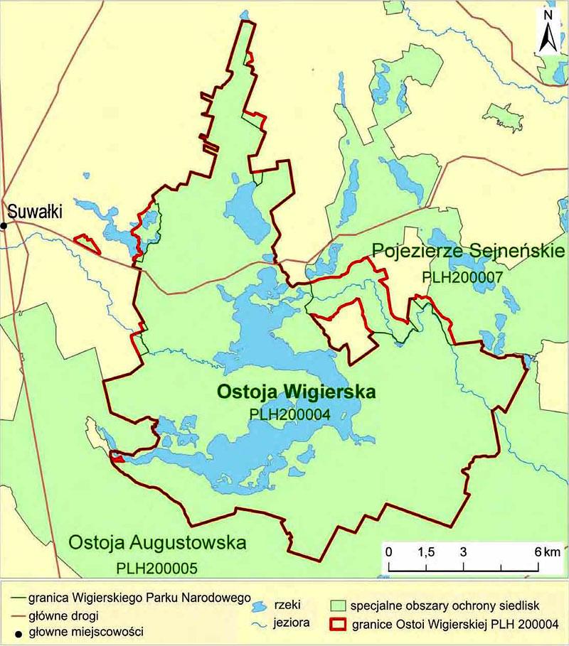 Ostoja Wigierska, Puszcza Augustowska